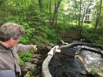 Billy explaining the fish ladders used by Alewives during migration